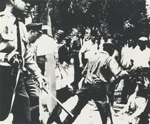 Warhol  birmingham race riot