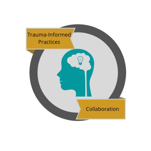 Collaboration with Families & Communities with a Trauma Lens
