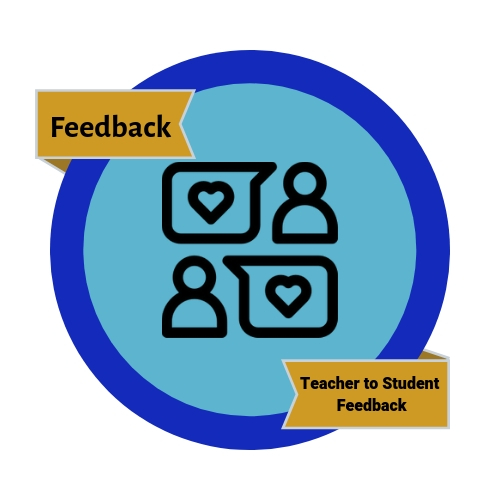 Teacher to Student Feedback