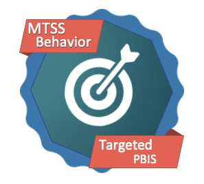 Targeted and Intensive Positive Behavior Interventions & Supports