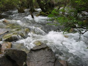 Recipe Renovator Downstream