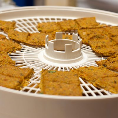 Product review: Breville juice fountain | Dog biscuits recipe