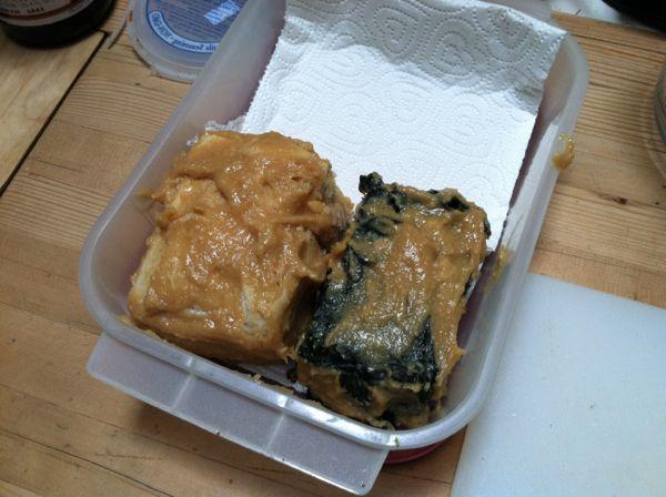 Two tofu blocks slathered in marinade