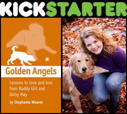 My Kickstarter campaign for Golden Angels