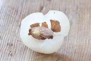 Rambutan fruit inside | Recipe Renovator