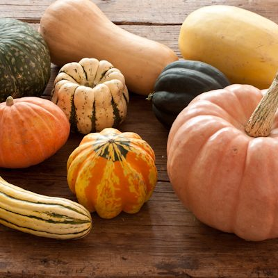 How to use squash
