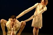 List_company_performancesfortheatersandpresenters