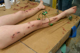 Rachel's leg mold. Remember the cut up legs in Winona Ryder's hospital scene? These are those.