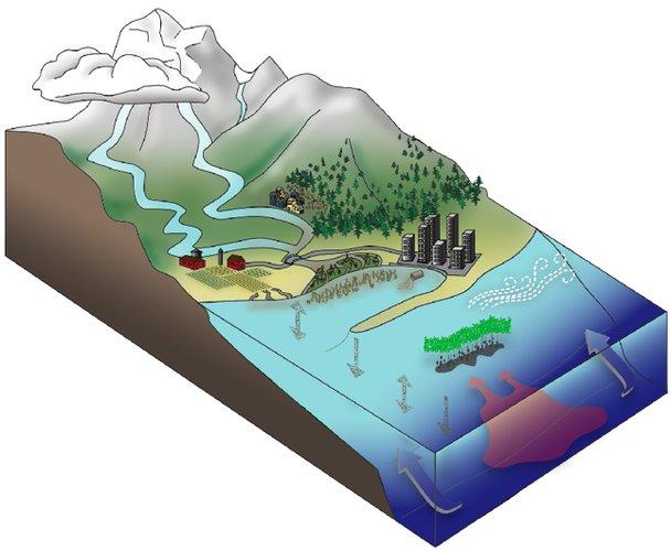 Models faith haney design illustration video for Soil 3d model