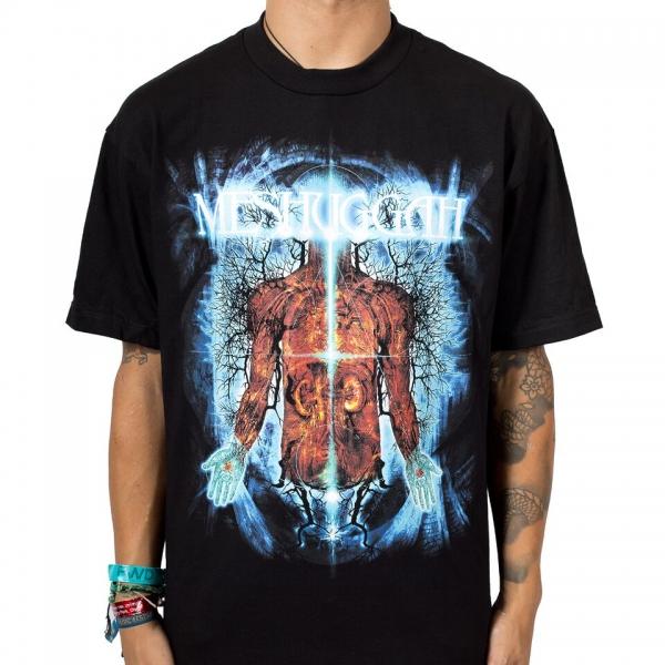T shirt anatomy