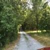 Mobile Home Lot for Sale: NC, MINERAL SPRINGS - Land for sale., Mineral Springs, NC