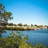 Mobile Home Park for Directory: Colony Cove, Ellenton, FL