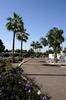 Mobile Home Park for Directory: Longhaven Estates, Phoenix, AZ