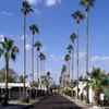 Mobile Home Park for Directory: Royal Palm MHC & RV  -  Directory, Phoenix, AZ