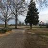Mobile Home Lot for Sale: MS, ASHLAND - Land for sale., Ashland, MS