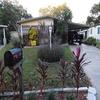Mobile Home for Sale: Gorgeous home in a great 55+ Community, Valrico, FL
