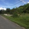 Mobile Home Lot for Sale: AL, DEMOPOLIS - Land for sale., Demopolis, AL