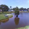 Mobile Home for Sale: Lakefront Gem!  Remodeled!  Furnished!, Tarpon Springs, FL