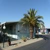 Mobile Home for Sale: Bright, Airy and Beautiful Home on Corner Lot, Scottsdale, AZ