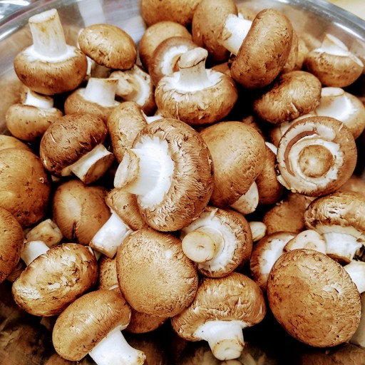Balsamic Garlic Grilled Mushroom and Pearl Onion Skewers