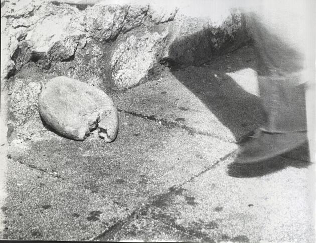 Stilinovic odnos noga kruh 2 a