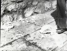 Stilinovic odnos noga kruh 4 a