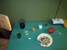 Urssa_severa_0445am_usinsk__alchemist_breakfast