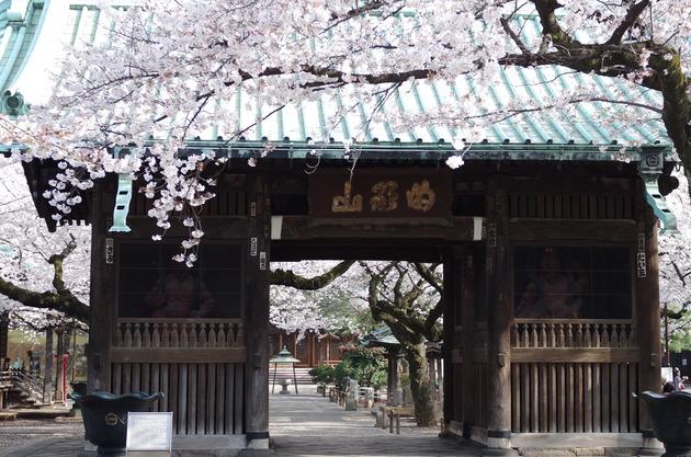 Yutenji1
