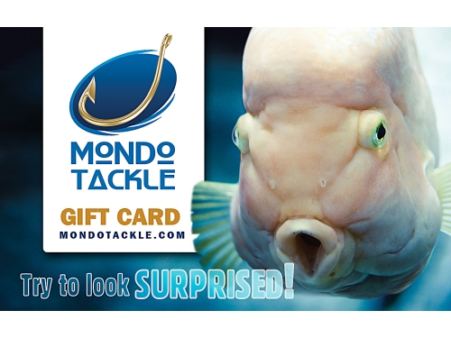 Gift Card - Surprise! Amounts of $25, $50, $100