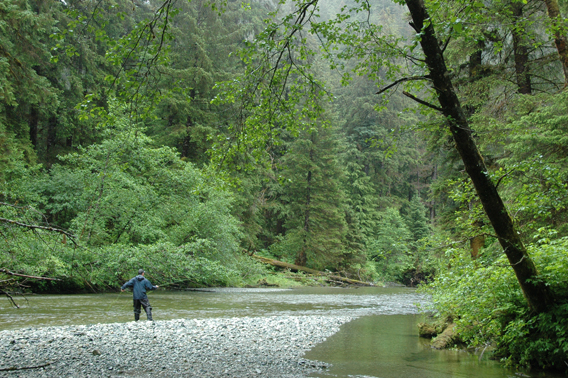 Fly fishing in the Tongass. Photo courtesy of the Sitka Conservation Society.