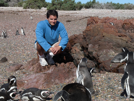 Borboroglu with Magellanic penguins. Photo courtesy of GPS.