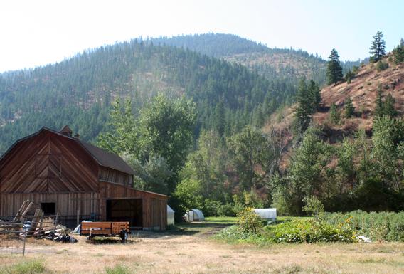 Organic farm in Montana. Photo by: Jeremy Hance.