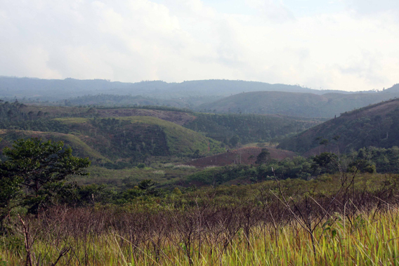 View of Bukit Barisan Selatan National Park in the Sekincau area. The forest has been destroyed over thousands of hectares. Photo courtesy of Patrice Levang.