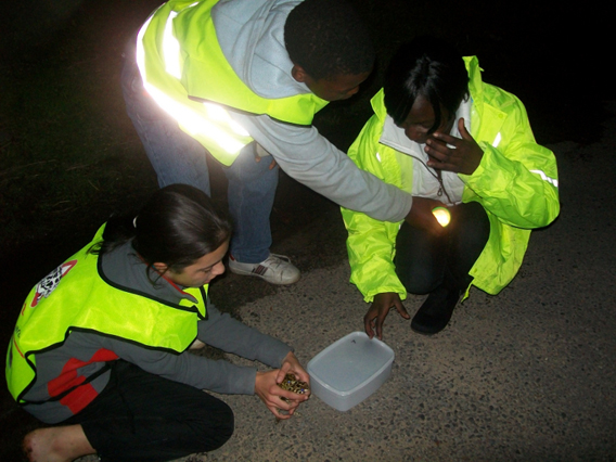 Families helping at night on patrol. Photo courtesy of: Hanniki Pieterse.