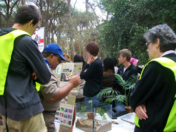 Some of our volunteers talking to Scouts. Pieterse in the right front corner. Photo courtesy of: Hanniki Pieterse.