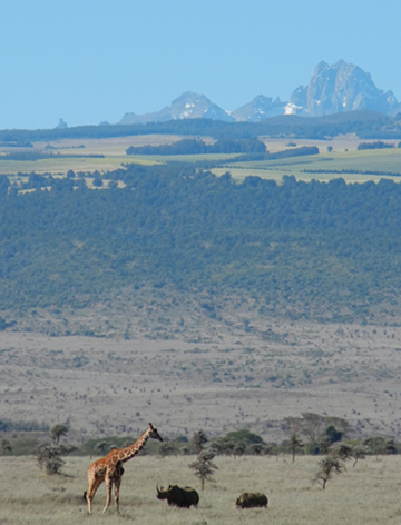 Mount Kenya viewed from Lewa. Photo courtesy of LWC.