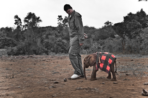 Yao Ming walks with Kinango, an infant elephant whose mother was killed by poachers. Photo by: Kristian Schmidt/WildAid.