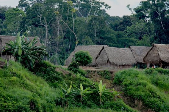 Village off the Las Piedras. Photo courtesy of Paul Rosolie.