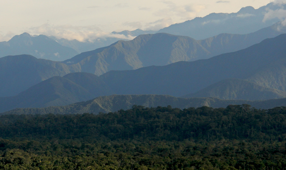 Mountains of the western Amazon. Photo courtesy of Paul Rosolie.