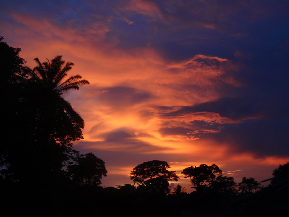 Sunset over the Congo rainforest. Loss of elephants could change the entire structure of the forest. Photo by: David Beaune.
