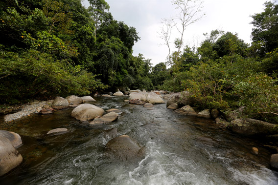 Rainforest river near Jantho, Aceh.