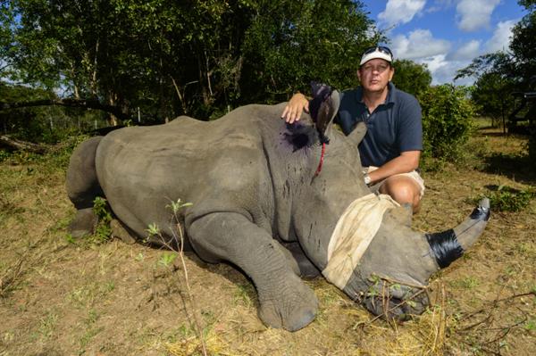 Translocating one of six rhinos. Photo by: Roger de la Harpe/&Beyond.