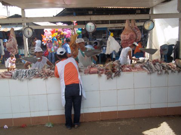 Local fish market in Peru. Photo courtesy of: Luis Fernandez.