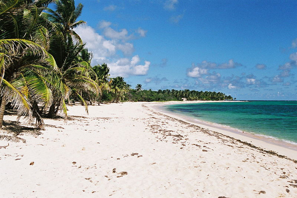 Feuiller beach in Guadeloupe.
