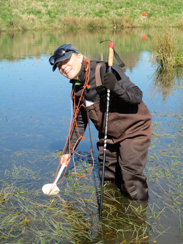 Warner counting amphibian egg masses in a wetland. Photo courtesy of Anne Warner.