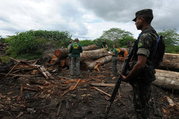 Brazilian soldiers encounter illegal logging in the Amazon. Photo by: Exército Brasileiro.