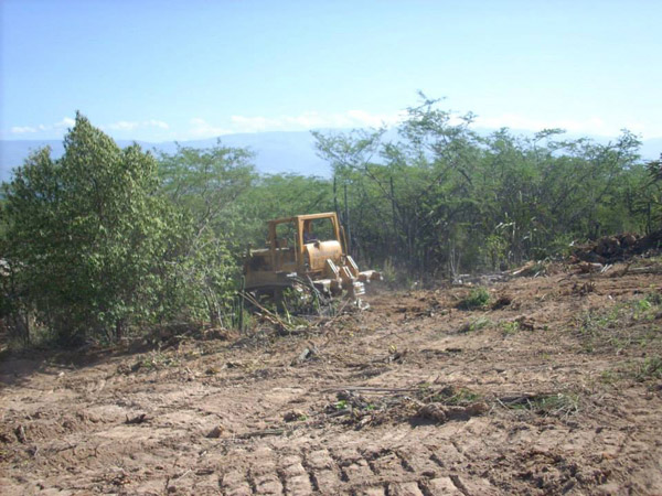 Bulldozer clearing land in the Loma Charco Azul Biological Reserve. Photo by: Grupo Jaragua.