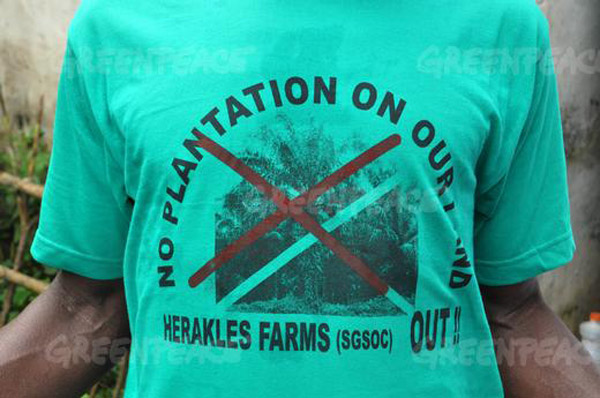 A man wears a t-shirt protesting against Herakles Farms plans to create a large palm oil plantation in Southwest Region, Cameroon. The shirt reads 'No Plantation on Our Land, Herakles Farms (SGSOC) Out!' Photo: © Greenpeace/Jean-Pierre Kepseu.
