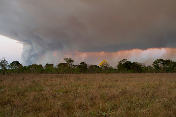 Fire near the reserve. Photo by: Rolex Awards/Kirsten Holst.