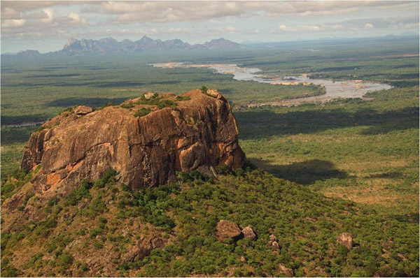 Aerial view of Niassa National Reserve. Photo by: Niassa Carnivore Project.